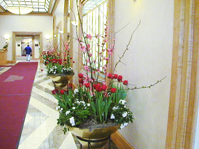 Tulips Lobby Color Rotation