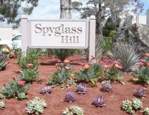 6 Spyglass After Photos PDF
