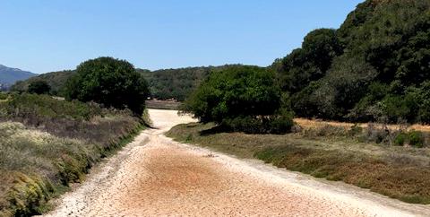 Dry Creek Bed - North Bay